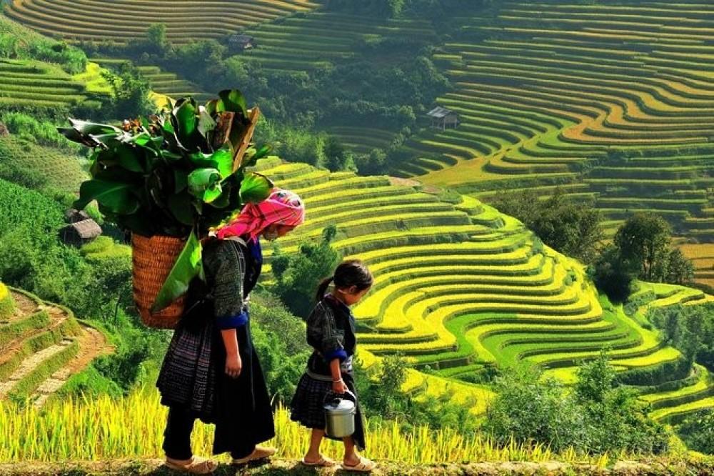 5 Day Adventure Sapa - Halong Bay from Hanoi