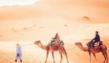 A picture of 2 Day Tunisian Sahara Desert Camel Trek from Douz