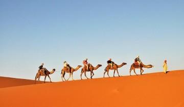 A picture of 3 Day Tunisian Sahara Desert Camel Trek from Douz