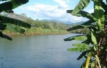 Tarcoles River