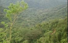 Nicoya Peninsula