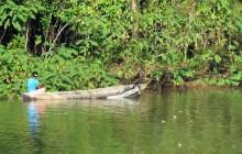 Frío River