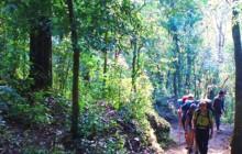 Pacaya Day Hike