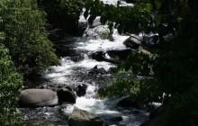 Chirripo River