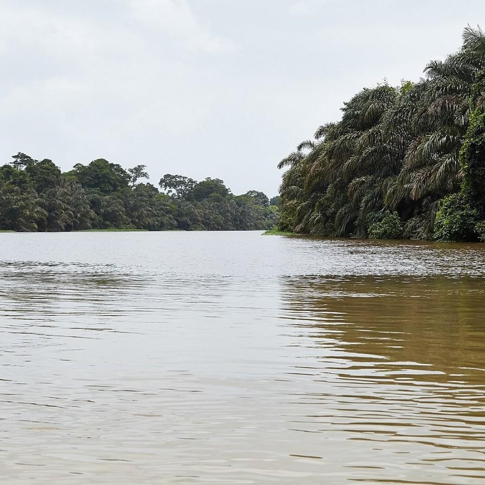 Suerte River