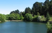 Wilson Botanical Gardens
