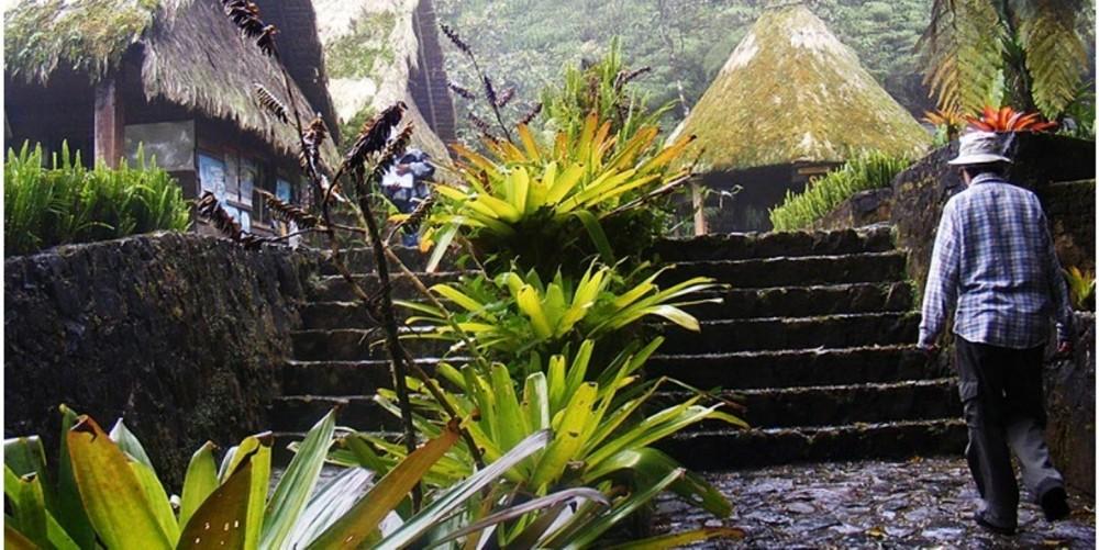 Biotopo Del Quetzal Coban Project Expedition