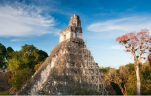 One day Tikal