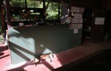 Cano Palma Biological Station