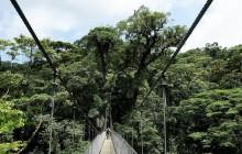 Sky Adventures Arenal Hanging Bridges - Unguided