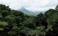 Sky Adventures Arenal Hanging Bridges - Unguided
