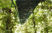 Unguided - Sky Adventures Hanging Bridges in Monteverde