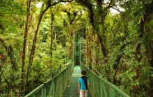 Selvatura Monteverde Hanging Bridges with Guide