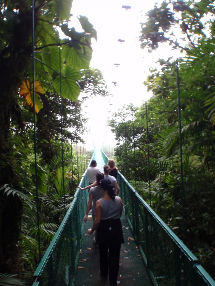 Guided - Sky Adventures Monteverde Hanging Bridges