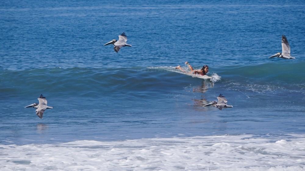 Surf Lessons at Playa Manuel Antonio