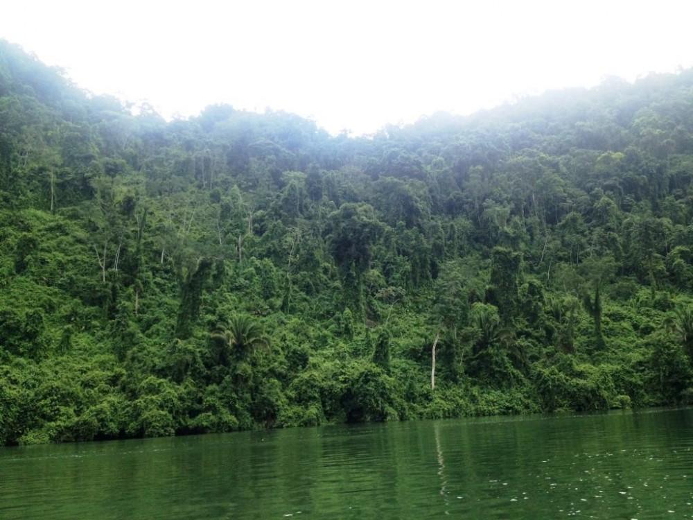 Rio Dulce Kayak Tour