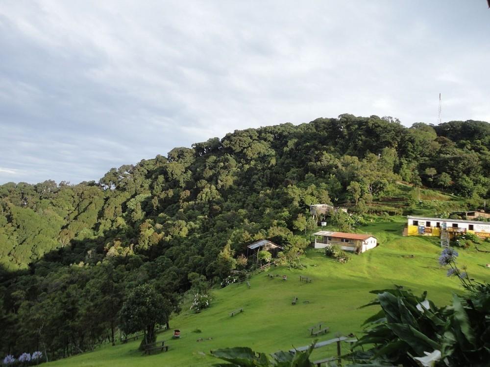 Cerro El Pital