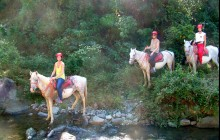 Panoramic Horseback Riding Tour