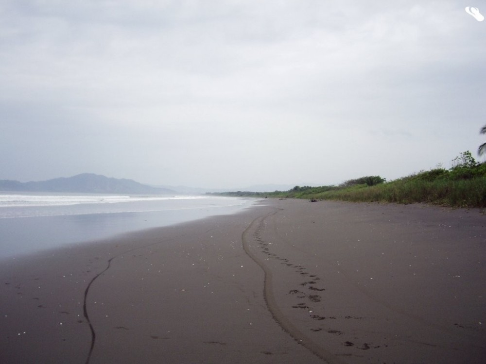 Isla Canas