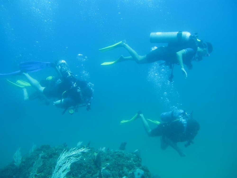 Scuba Diving Cano Island From Uvita