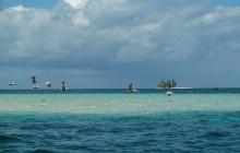 Pelicano Island