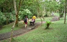 Arenal Volcano Hike Tour