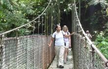 Jacamar Naturalist Tours