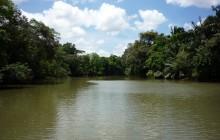 Cano Negro Wildlife Refuge on Canoe