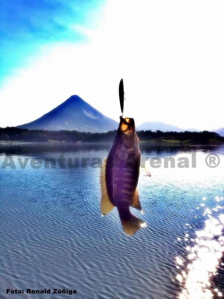 Sport Fishing Lake Arenal - Half Day