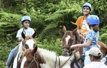 Horseback to Arenal Volcano