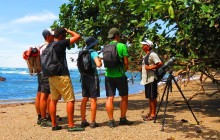 Corcovado Nature Tour - Full Day