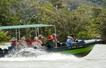 Panama Canal Rainforest Boat Tour