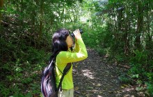 Guided Bird-Watching In Pipeline Road