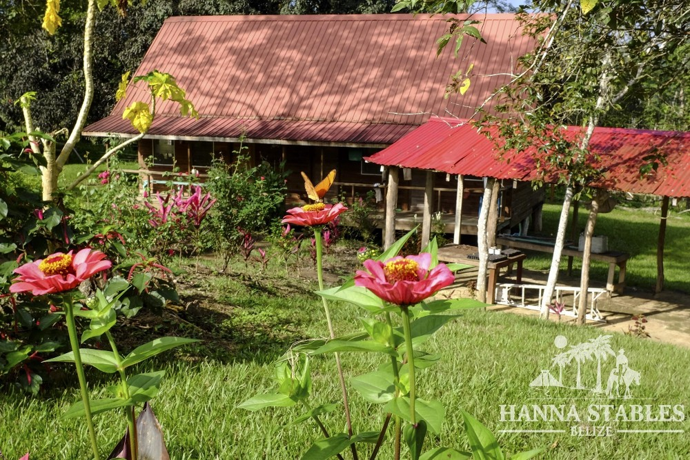 Six Night Belize Vacation Package