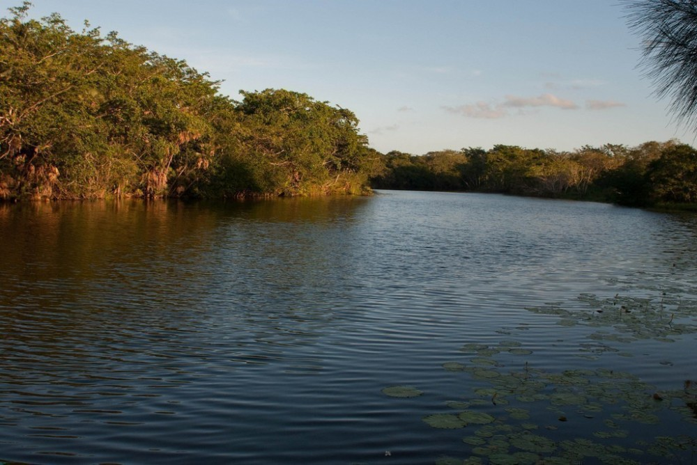 New River (Belize)
