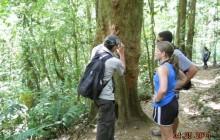 Rio Celeste Hike