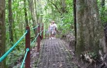 Arenal Volcano Hike & Baldi