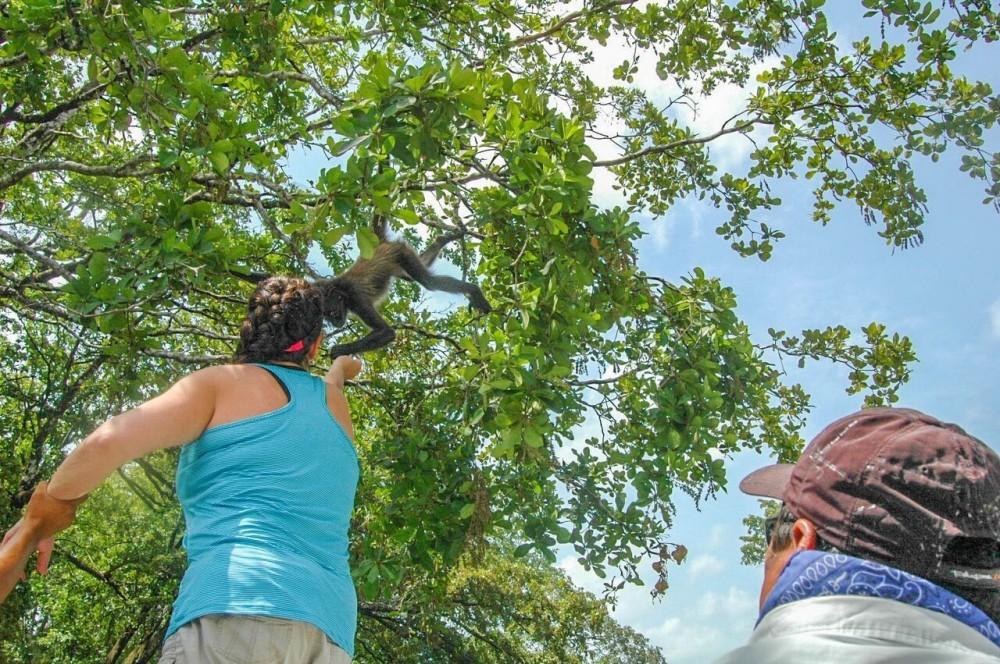 Belize Rum Tour & Agua Dulce Cenote