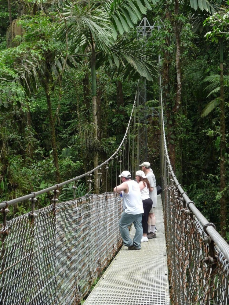 Arenal Hanging Bridges + La Fortuna Waterfall