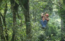 Canopy Tour Athica with Horseback Riding