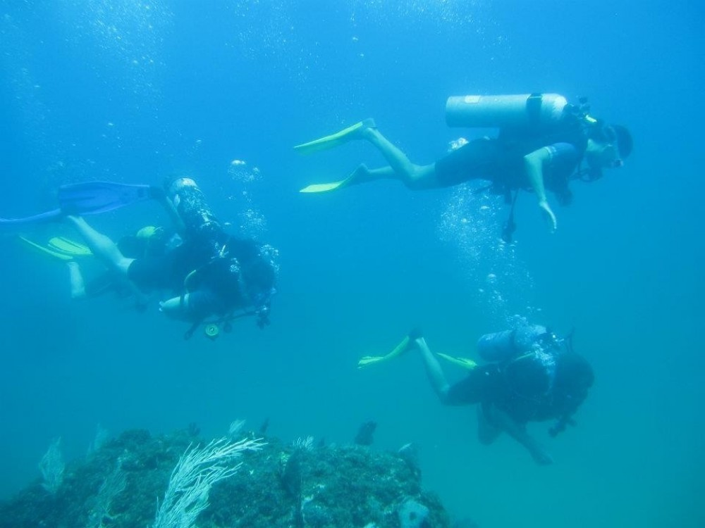 Scuba Diving Cano Island From Dominical