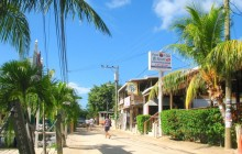 Go With Gus - Roatan