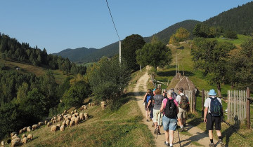 A picture of 8-Day Village Life in Transylvanian Carpathian Mountains
