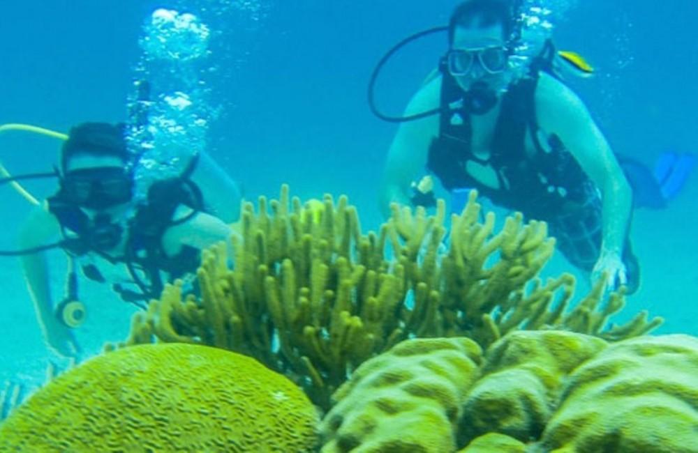 Scuba Diving: 2 Tanks