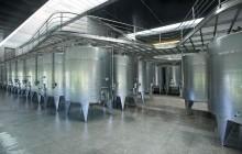 Undurraga Wine Tasting Tour