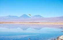 Cejar & Tebenquiche Lagoons