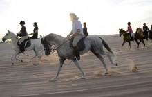 Desert horse riding adventure