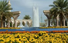 Day trip to Al Ain with lunch