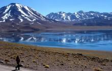 Altiplanic Lagoons & Atacama Salt Flat