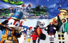 Dream World & Snow Town With Lunch Shared Basis